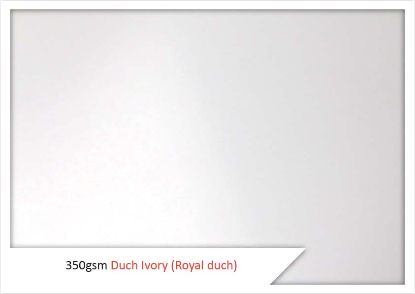 350 Gsm Dutch Ivory