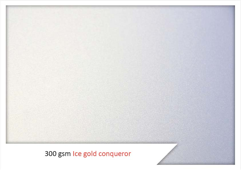 300 Gsm Ice Gold Conqueror