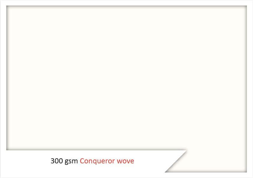 300 Gsm Conqueror Wove